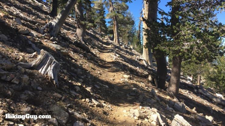 San Bernardino Peak Hike climbs