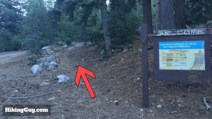 San Bernardino Peak Hike start