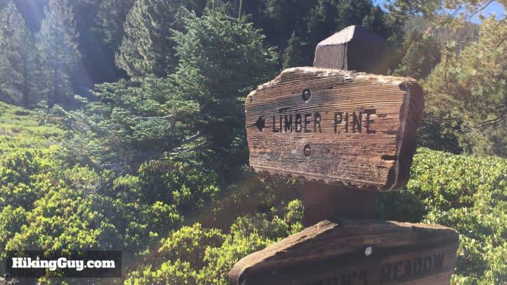 San Bernardino Peak Hike trail junction