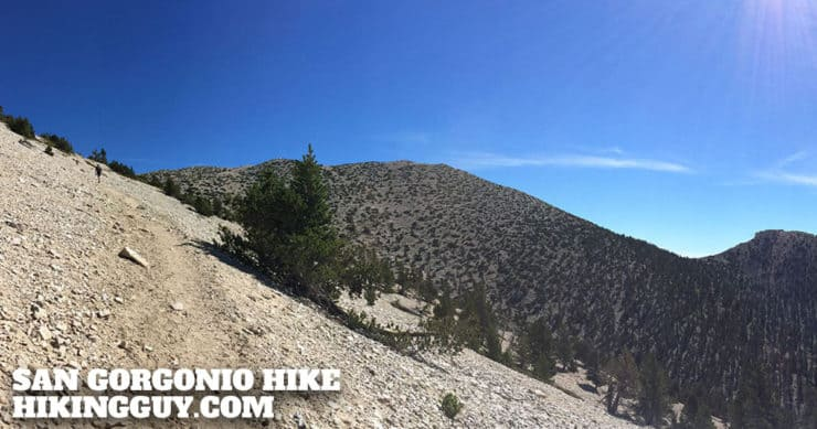 San Gorgonio Hike