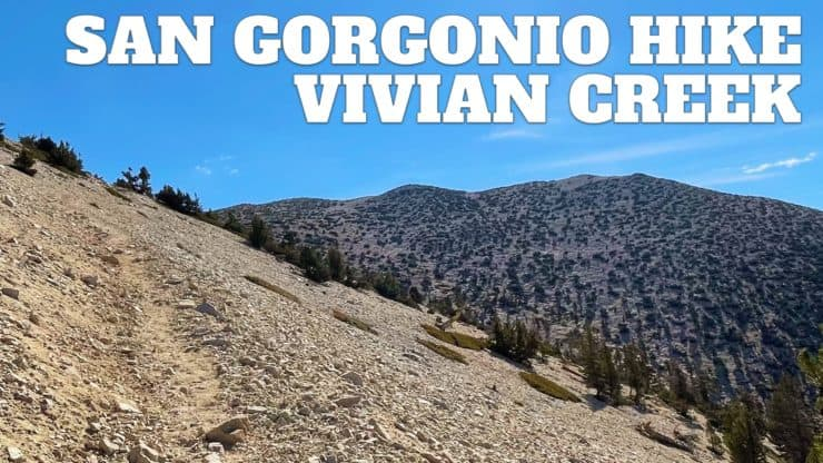 San Gorgonio Hike on the Vivian Creek Trail