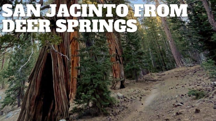 Hike Mt San Jacinto Peak on the Deer Springs Trail
