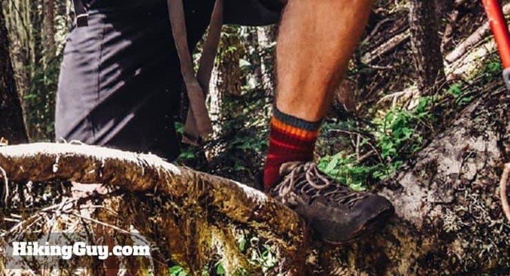 The Best Socks on Earth