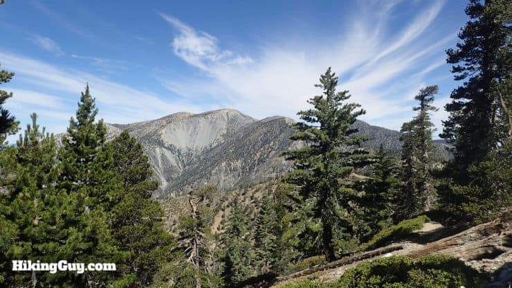 views of Mt Baldy