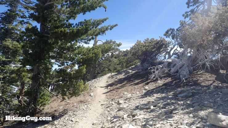 spur to the Telegraph Peak summit
