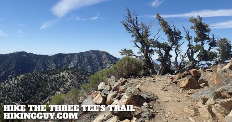Hike the Three T's Trail