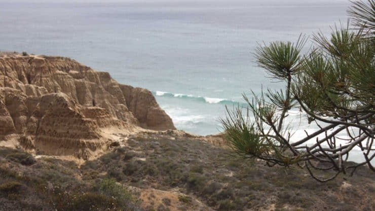 Torrey Pines Hike ocean views