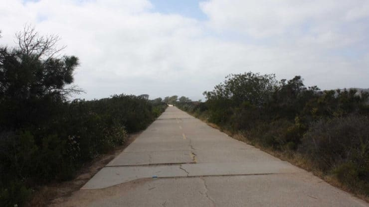 Torrey Pines hiking trail