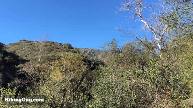 view of Saddleback Mountain