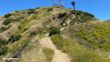 Vital Link Trail To Verdugo Peak Directions 20
