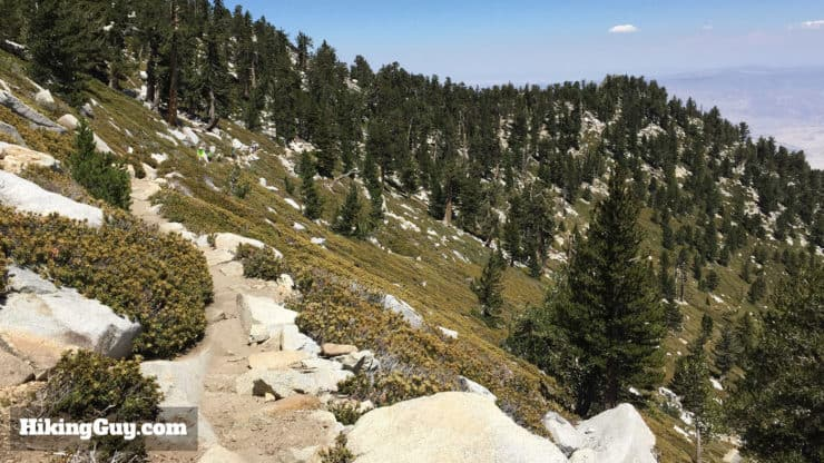 Wellman Divide Trail